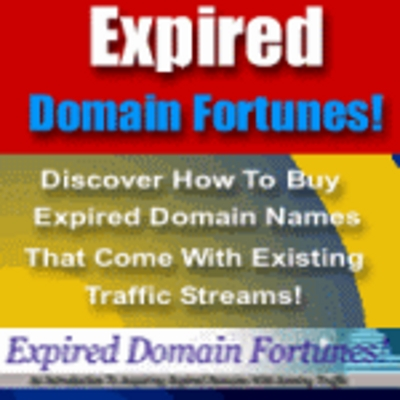 Product picture Expired Domain Fortune - Make Money With Expired Domains